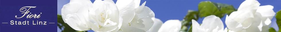 fiori neu1